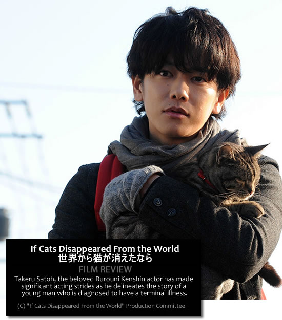 If Cats Disappeared from the World, Takeru Satoh - Movie Review